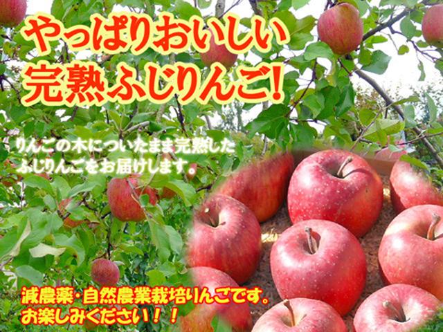 完熟ふじりんご3