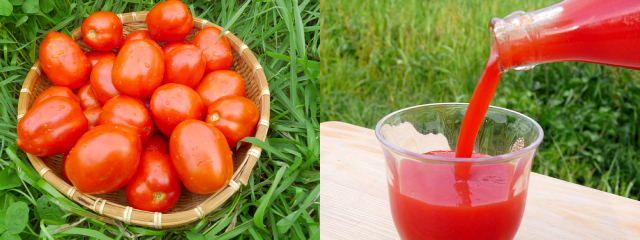 トマトセット3